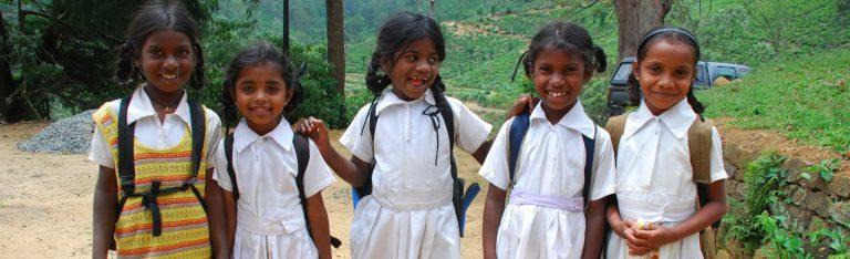 Verrassend Sri Lanka | Rama Tours