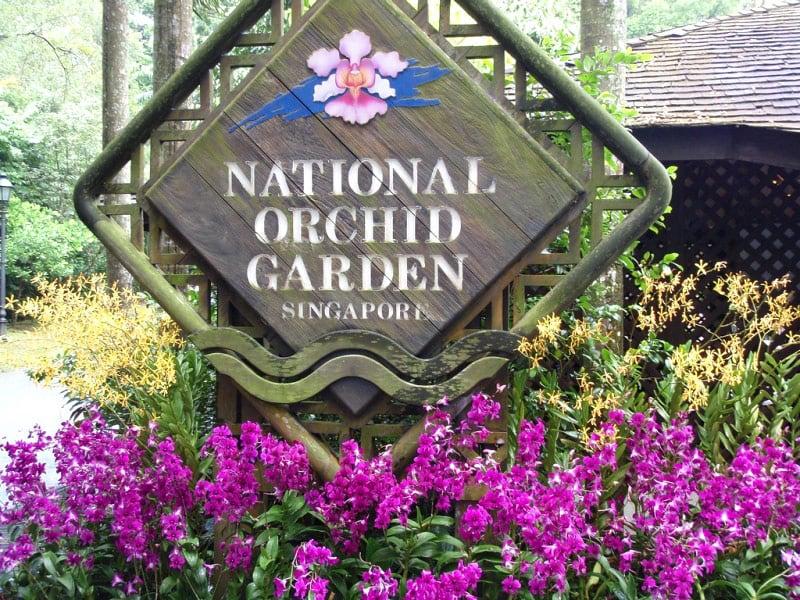Botanische tuinen Singapore | Rama Tours