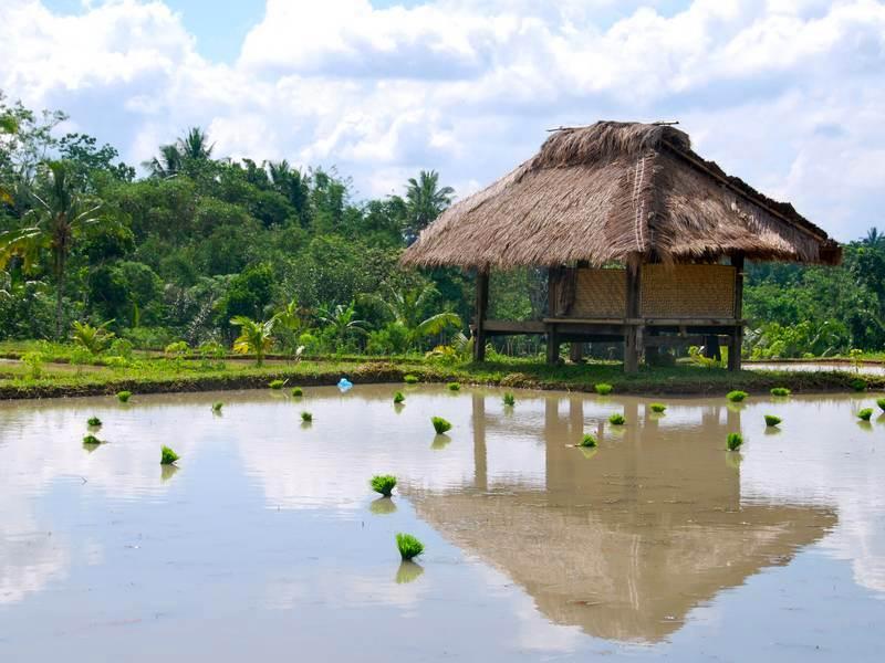 Rondreis Lombok