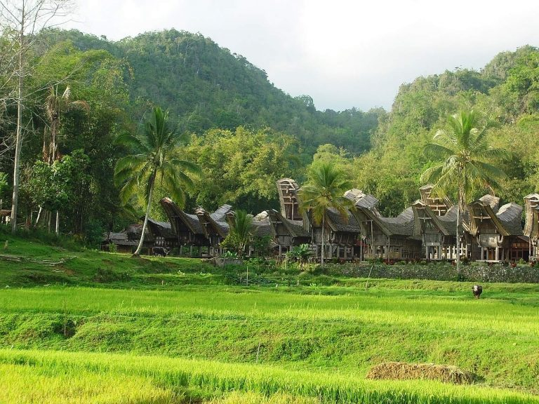 Schitterend Sumatra en Sulawesi | Rama Tours